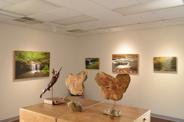 The new Nelms Gallery at 107 Church Street, Jasper Ar.      870-446-5477